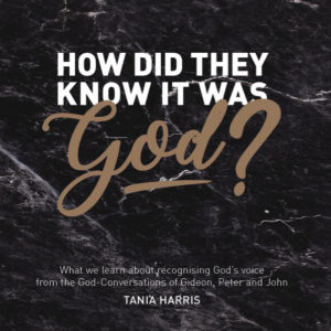 How Did They Know it was God? (CD Series)